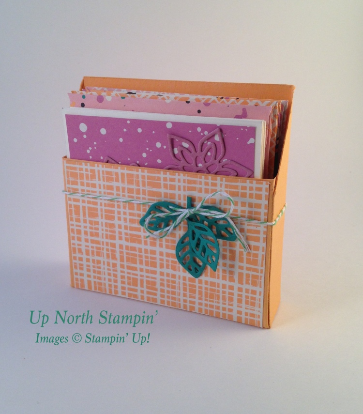 Playful Palette Box Notecards Stampin' Up! Stampin' Up North