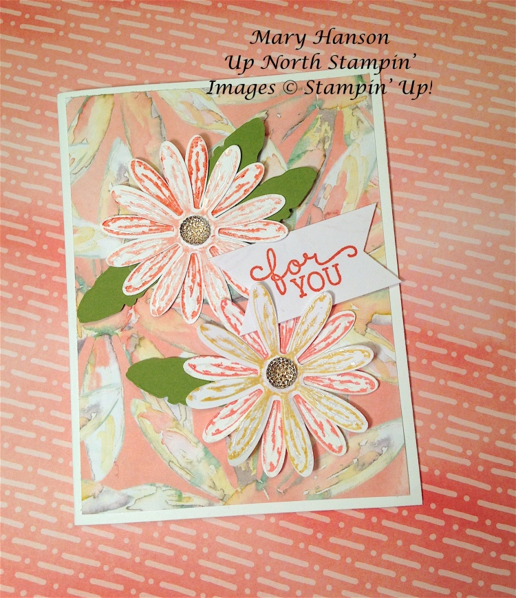 Daisies Coral For You Birthday Blooms Up North Stampin'