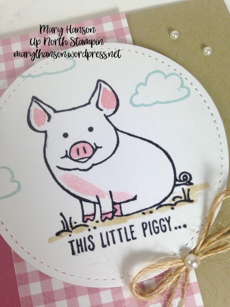 Piggy Close Up