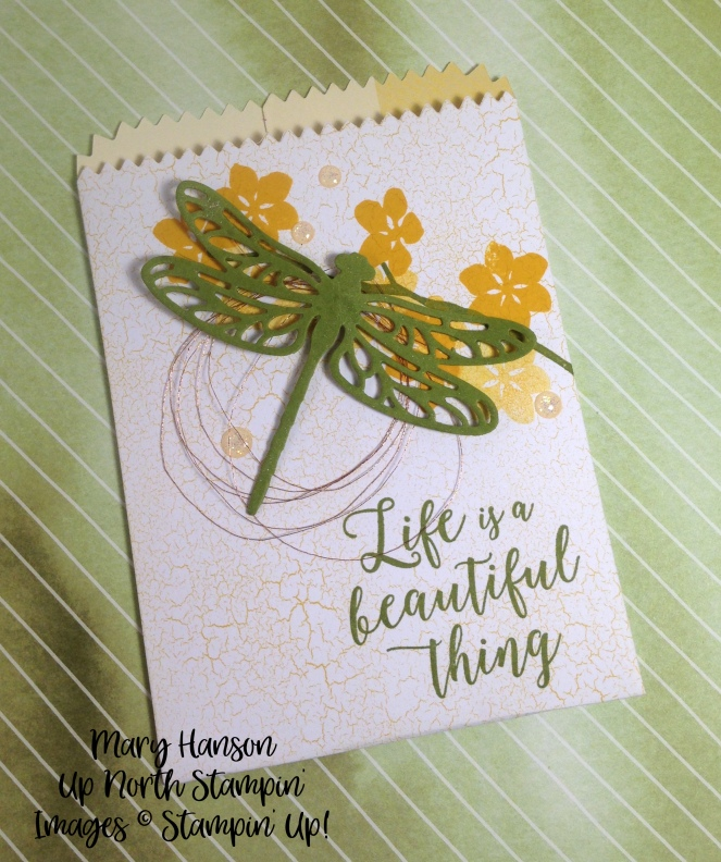 Treat Bag Colorful Seasons Mary Hanson Up North Stampin'