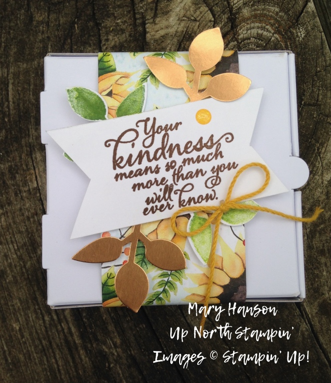 Stampin' Up! - Painted Harvest - Pizza Box 1 - Mary Hanson - Up North Stampin' - Stampinup