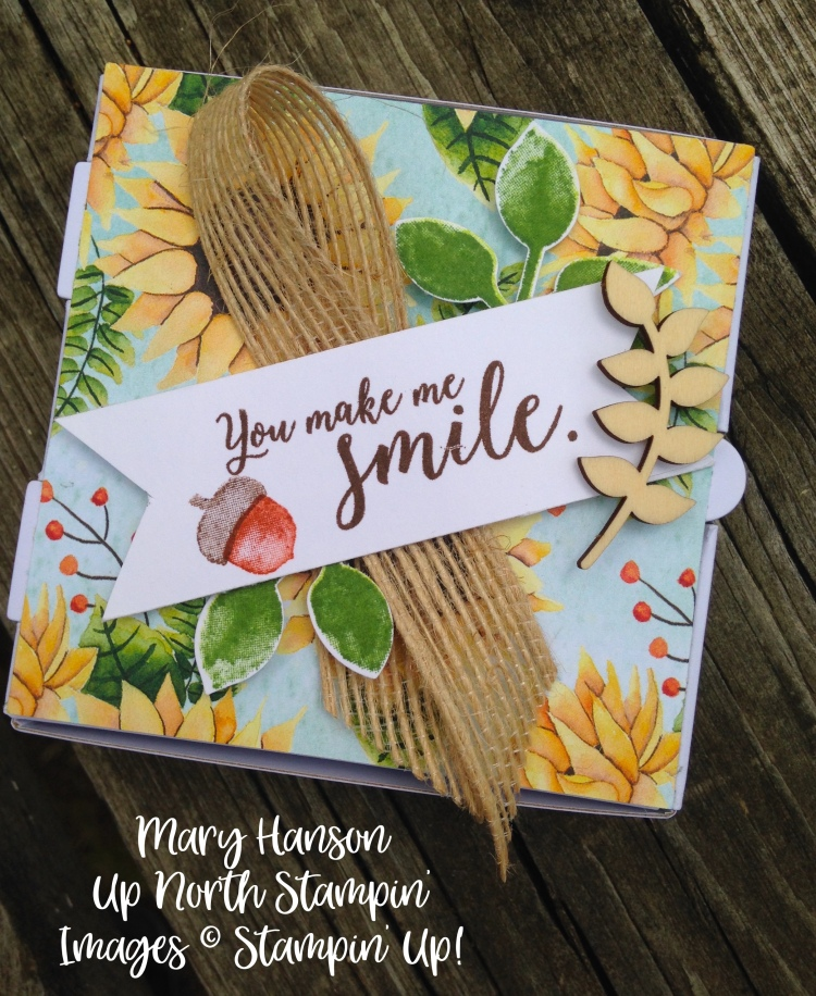 Stampin' Up! - Painted Harvest - Pizza Box 2 - Ideas - Mary Hanson - Up North Stampin' - Stampinup