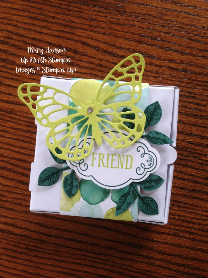 Stampin' Up! - Pizza Box - Butterfly Thinlits - Label Me Pretty - Leaf Punch - Ideas - Mary Hanson - Up North Stampin' - Stampinup