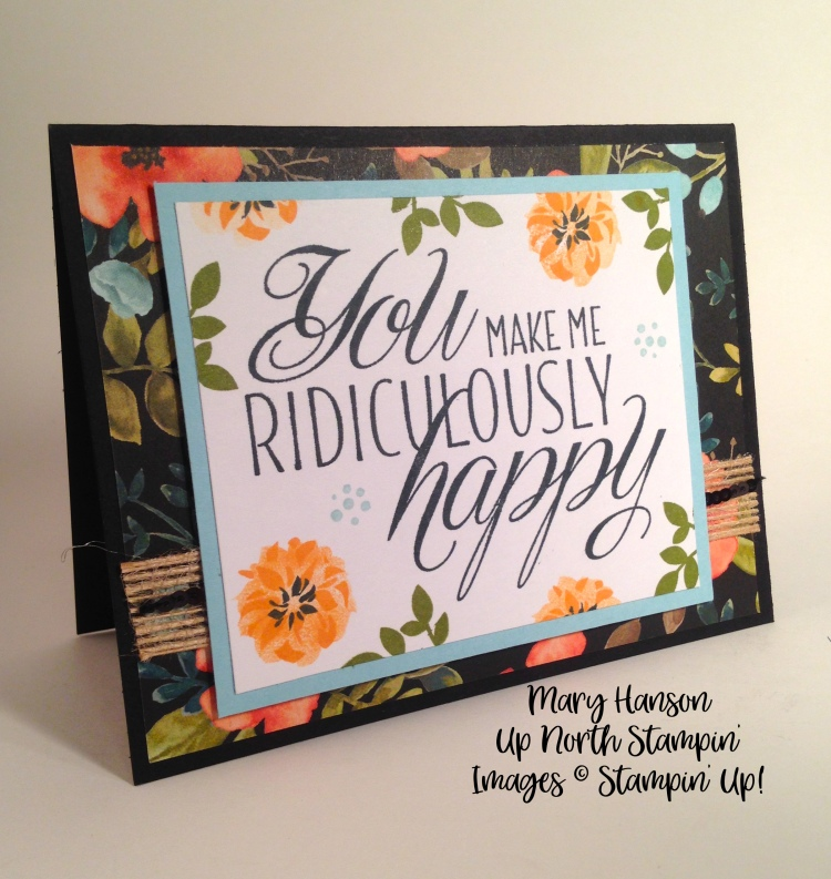 Whole Lot of Lovely Friends Mary Hanson Up North Stampin'