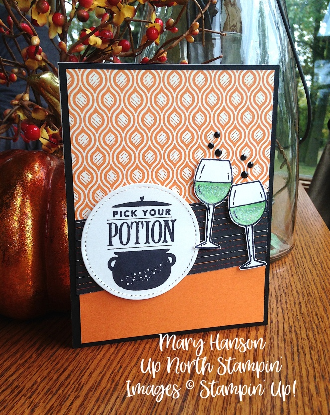 Half Full - Festive Phrases - Stampin' Up! - Up North Stampin' - Mary Hanson