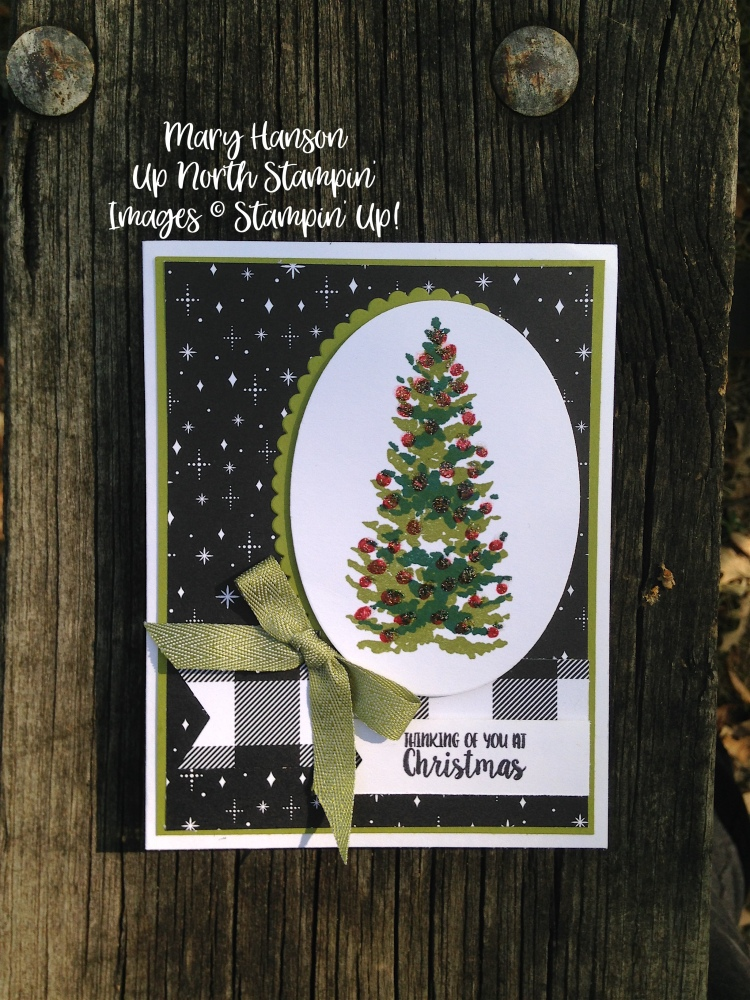 Season Like Christmas 2 - Stampin' Up! Merry Little Christmas - Mary Hanson - Up North Stampin'
