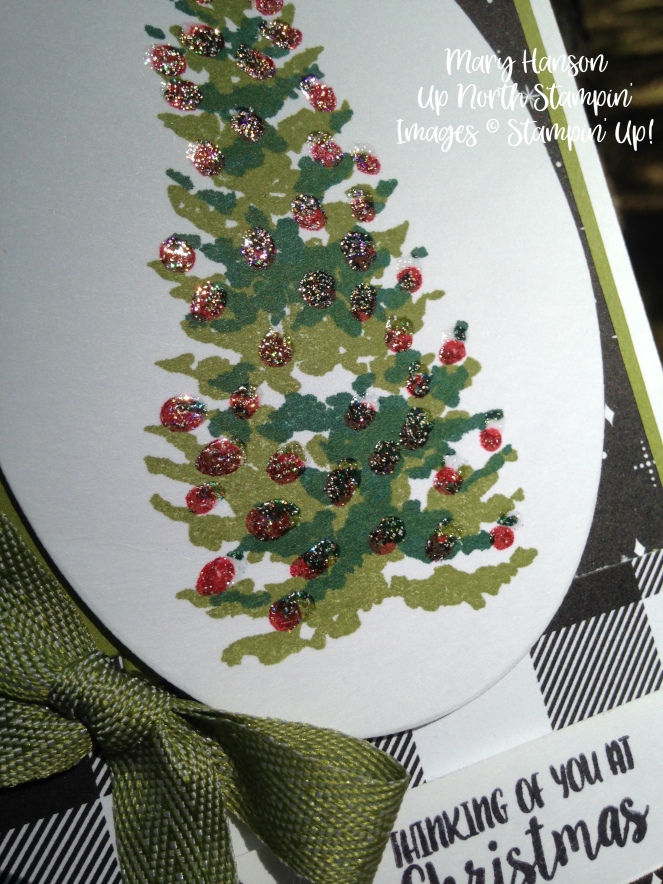 Season Like Christmas Close up 3 - Mary Hanson - Up North Stampin'
