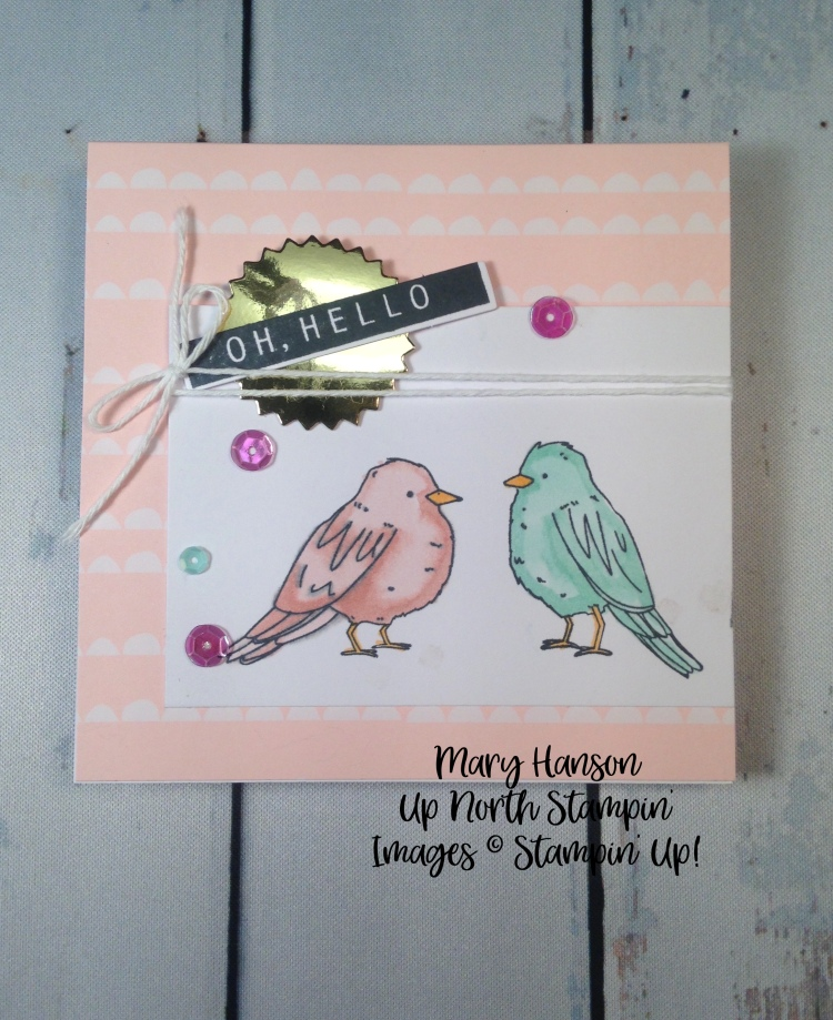 Color Me Happy Kit - Birds - Stampin' Up! - Mary Hanson - Stampin' Blends - Up North Stampin'