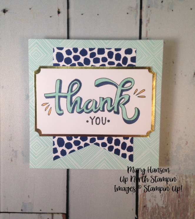 Color Me Happy Kit Thank You - Stampin' Up! - Mary Hanson - Up North Stampin'