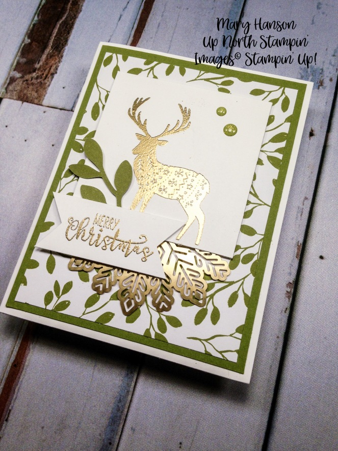 Merry Patterns 2 - Half Full - Mary Hanson - Up North Stampin'