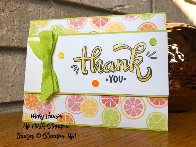 Tutti Frutti DSP 2 - Color Me Happy - Stampin' Blends - Mary Hanson - Up North Stampin'