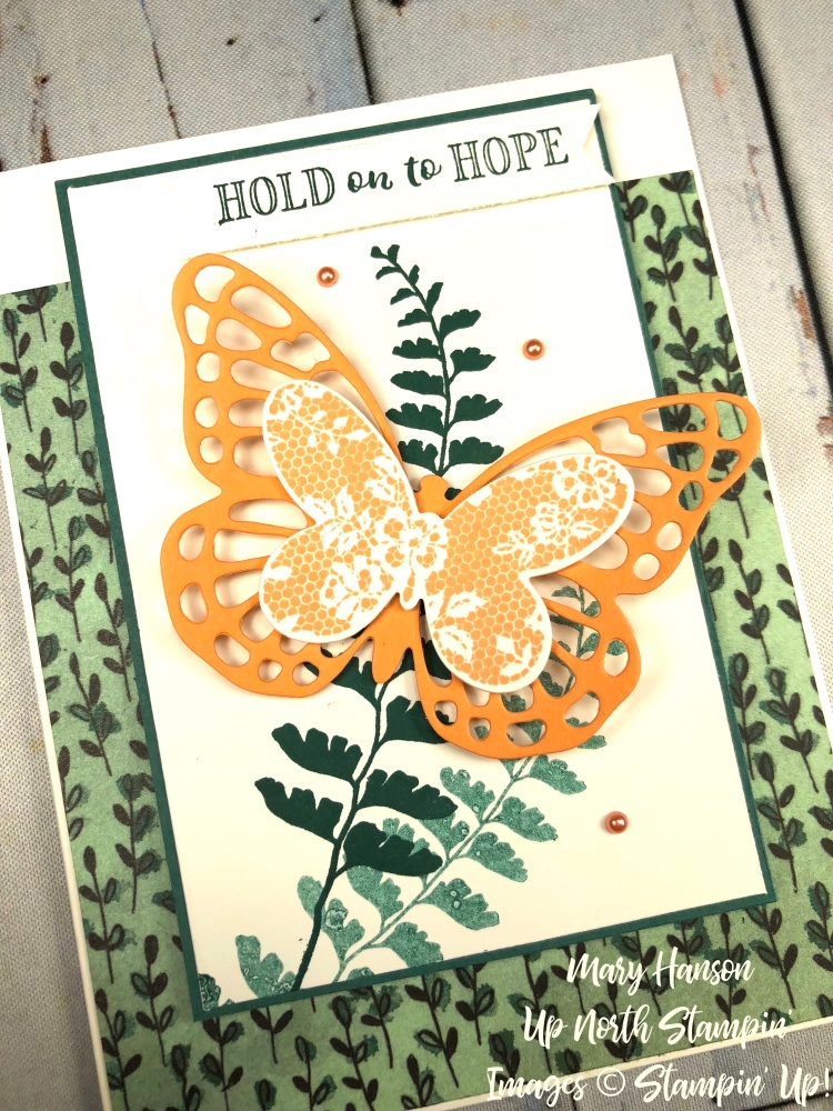 Butterfly Basics - Share What You Love - Grapefruit Grove - Hold On to Hope - Up North Stampin'