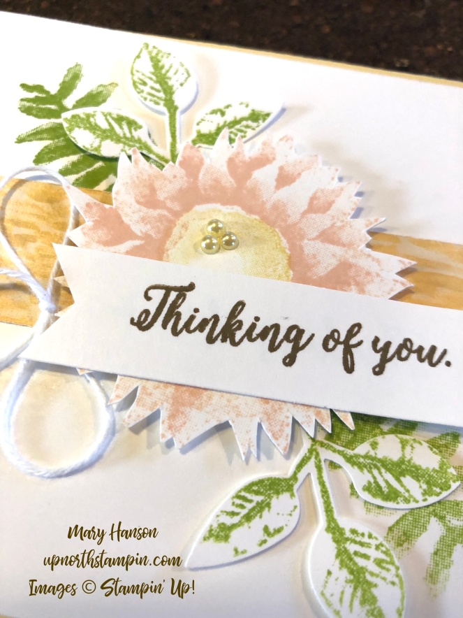 Painted Harvest Close - Petal Pink - So Saffron - Leaf Punch - Mary Hanson - Up North Stampin' - Stampin' Up!