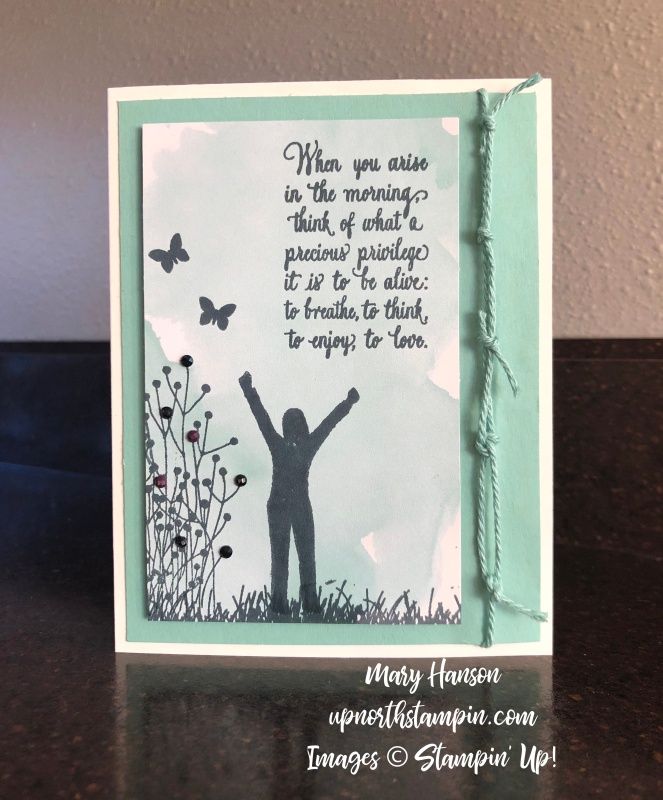 Enjoy Life - Delightfully Detailed Note Cards - Mint Macaron - Mary Hanson - Up North Stampin' - Stampin' Up!