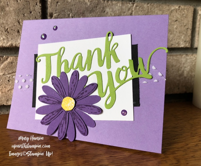 A Big Thank You - Delightful Daisy - Mary Hanson - Up North Stampin' - Stampin' Up!