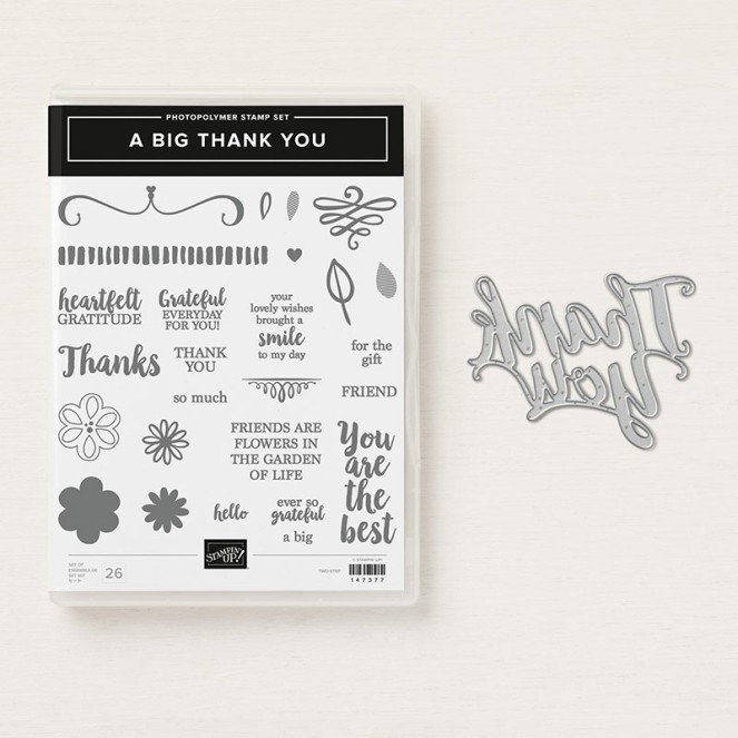 A Big Thank You Stamp Set
