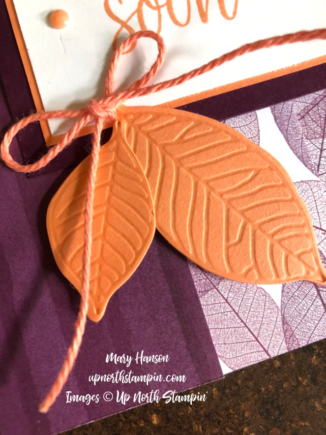 Close Up - Nature's Poem - Mary Hanson - Up North Stampin'