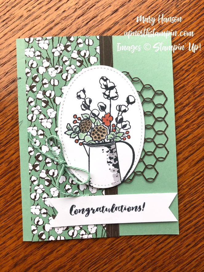 Country Lane - Mint Macaron - Chicken Wire Elements - First Frost - Mary Hanson - Up North Stampin'