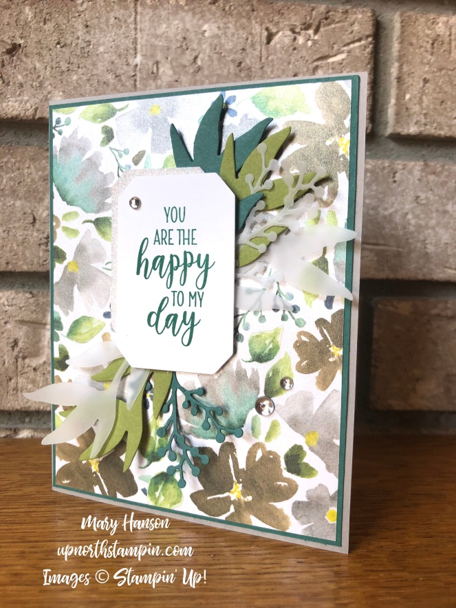 Frosted Floral Specialty Designer Series Paper - Frosted Floral Bundle - Country Lane - Mary Hanson - Up North Stampin'