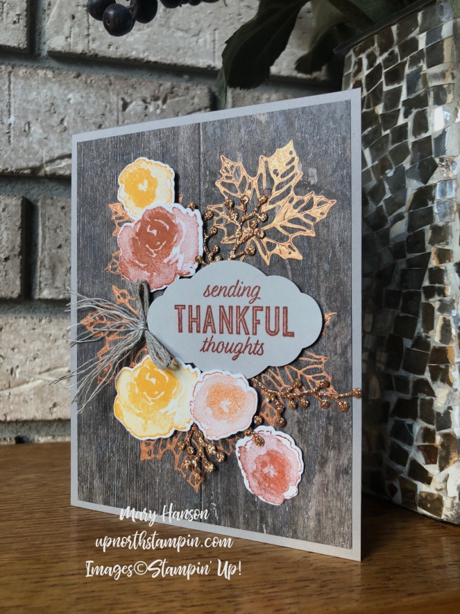 First Frost - Colorful Seasons - Bright Copper Shimmer Paint - Mary Hanson - Up North Stampin' - Stampin' Up!