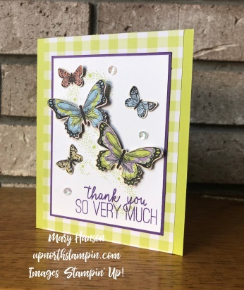 Botanical Butterflies - 2 - Gingham Gala - Lime - Butterfly Gala - Mary Hanson - Up North Stampin' - Stampin' Up!