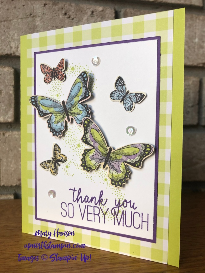 Botanical Butterfly - Butterfly Gala - Gingham Gala - Mary Hanson - Up North Stampin'