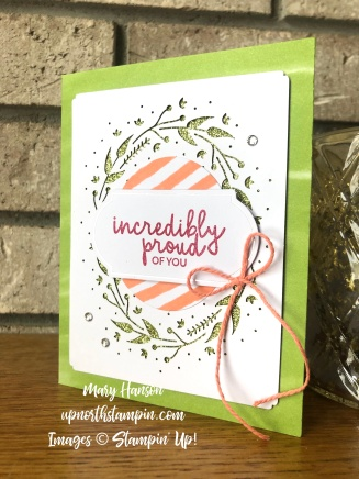 Incredible Like You Kit 1 - Mary Hanson - Up North Stampin' - Stampin' Up!