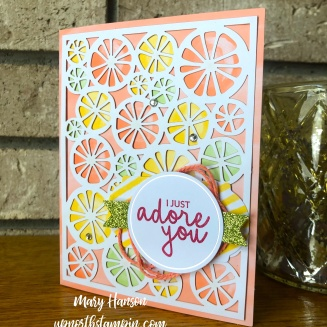 Incredible Like You Kit 2 - Mary Hanson - Up North Stampin' - Stampin' Up!