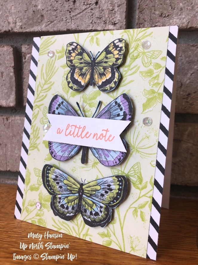 Stampin' Success - Butterfly Gala - Botanical Butterfly - Mary Hanson - Up North Stampin' - Stampin' Up!