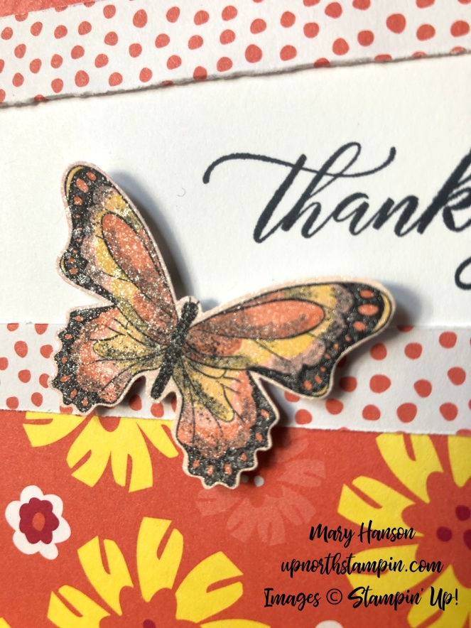 happiness blooms - botanical butterfly designer series paper - kindness and compassion - close up - creative fold - mary hanson - up north stampin'