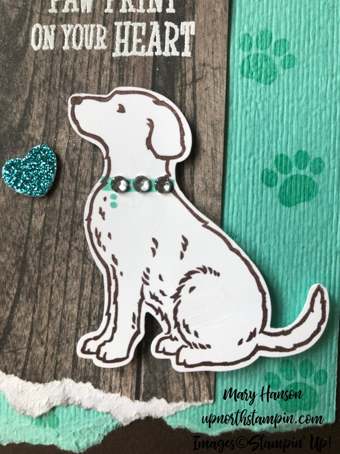 happy tails - dog closeup - mary hanson - up north stampin'