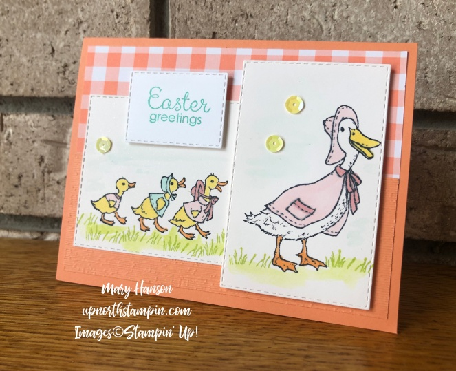 Fable Friends - Ducks - Gingam Gala Designer Series Paper - Mary Hanson - Up North Stampin'