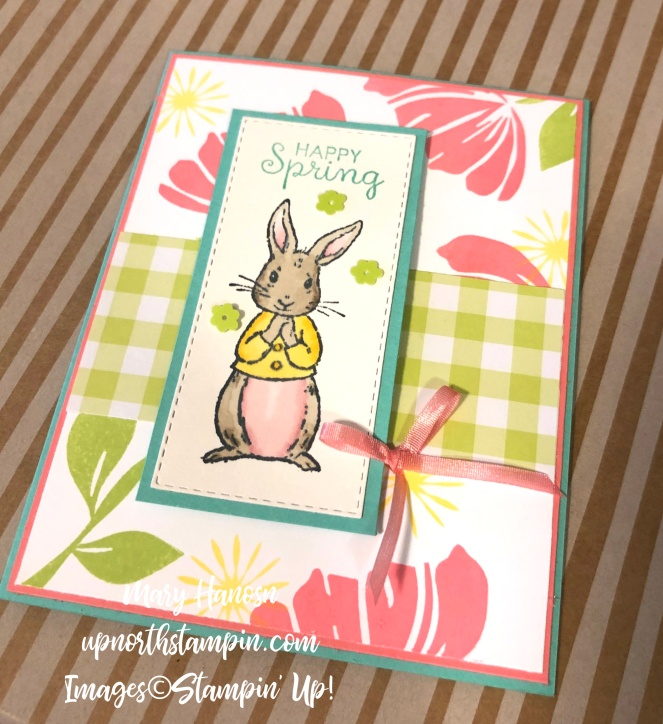 Fable Friends - Rabbit on Stripes - Gingham Gala Designer Series Papers - Bloom by Bloom - Mary Hanson - Up North Stampin'