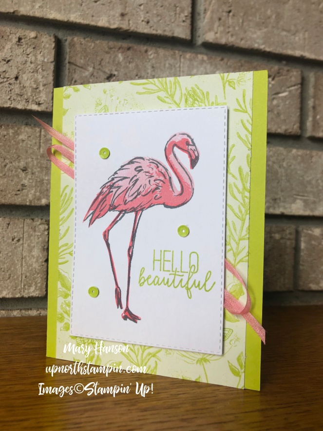 Fabulous Flamingo - Botanical Butterfly - Mary Hanson - Up North Stampin' - Stampin' Up!