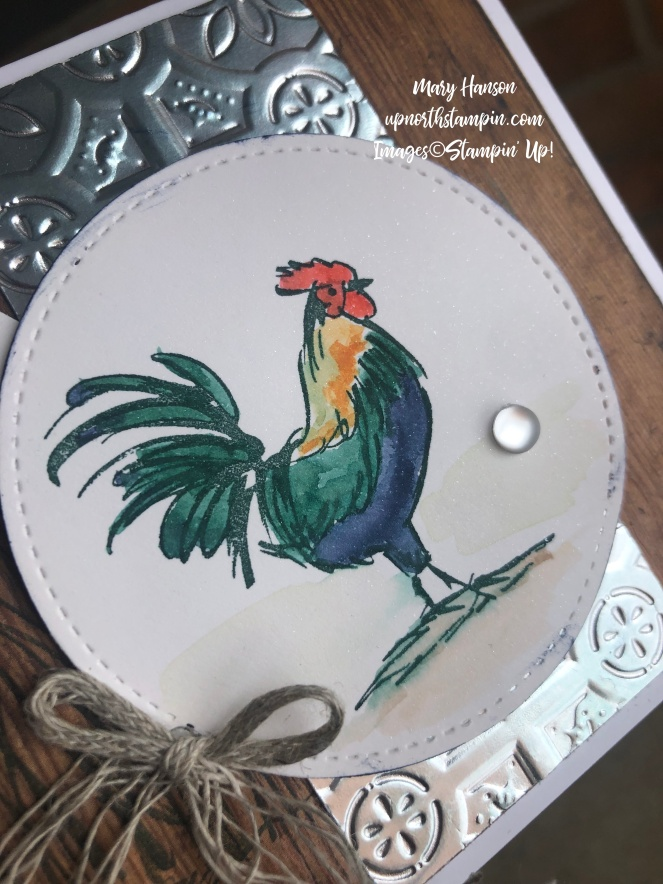 Home to Roost - Close Up - Mary Hanson - Up North Stampin' - Stampin' Up!