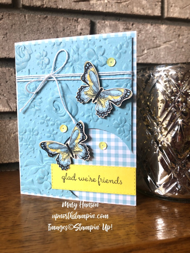 Balmy Blue - Botanical Butterfly - Circle Punch - Gingham Gala Designer Series Paper - Fable Friends - Mary Hanson - Up North Stampin'