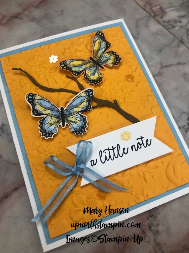 Botanical Butterflies Designer Series Paper - Country Floral Textured Impressions Embossing Folder - Butterfly Gala stamp set - Mango Melody - Mary Hanson - Up North Stampin' - Stampin' Up!