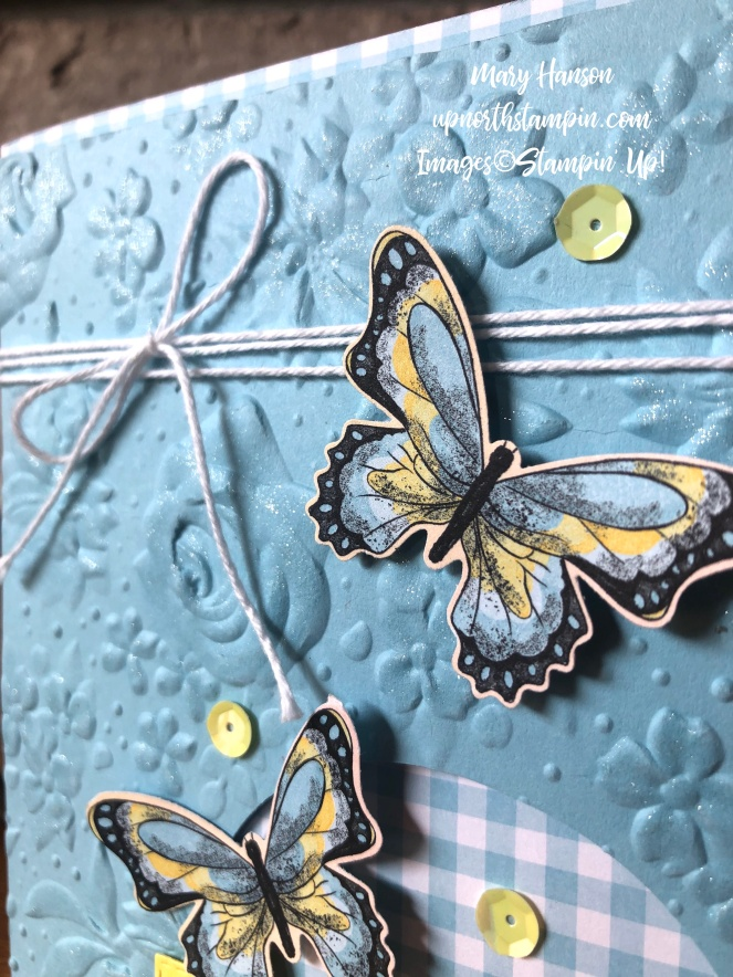 Close Up - Balmy Blue - Botanical Butterflies - Wink of Stella - Mary Hanson - Up North Stampin'