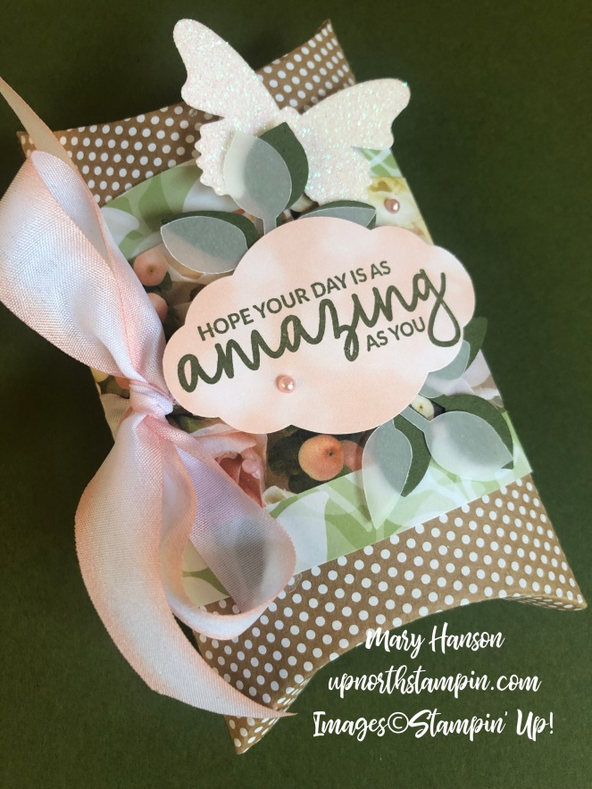 Incredible Like You - 2 - Butterfly Duet Punch - Petal Promenade - Floral Romance - Mary Hanson - Up North Stampin'