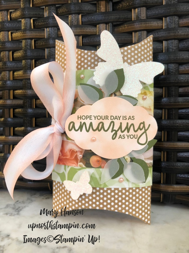 Incredible Like You - Basket Background - Kraft Box - Petal Promenade - Floral Romance - Butterfly Duet Punch - Mary Hanson - Up North Stampin'