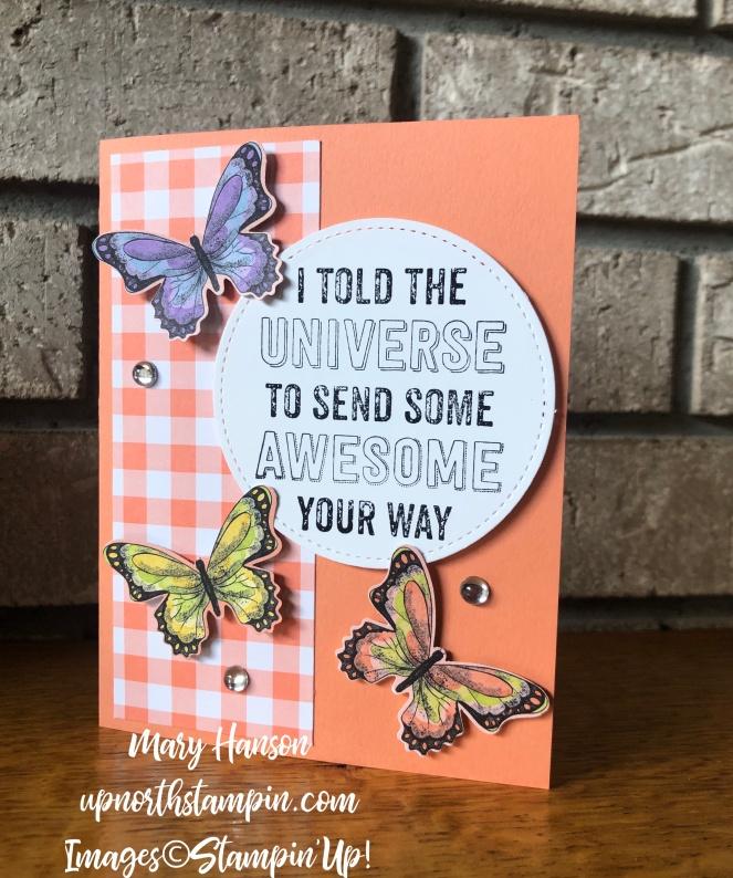 Genuine Gems - Botanical Butterflies Designer Series Paper - Gingham Gala Designer Series Paper - Grapefruit Grove - Mary Hanson - Up North Stampin'