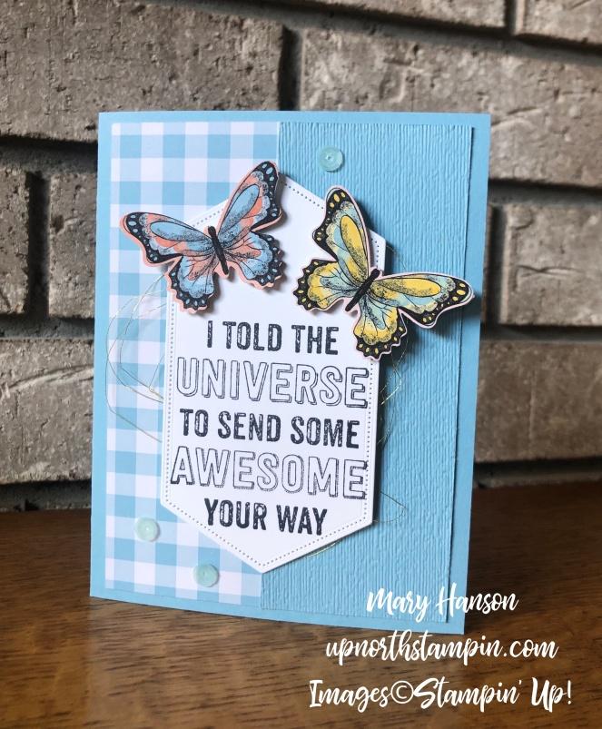 Genuine Gems - Botanical Butterflies Designer Series Paper - Gingham Gala Designer Series Paper - Mary Hanson - Up North Stampin'