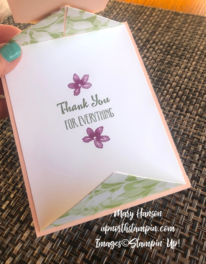 Petal Palette Bundle - Fancy Fold - Stitched Nested Labels Dies - Inside - Frosted Flower Embellishments - Mary Hanson - Up North Stampin'