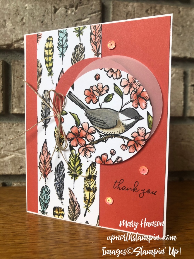 Bird Ballad Designer Series Paper - Vellum Cardstock - Free as a Bird Stamp Set - Terra Cotta Tile - Mary Hanson - Up North Stampin' - Stampin' Up!