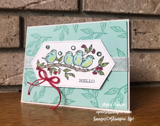 Stitched Nested Labels Dies - Pool Party - Free as a Bird Stamp Set - Mary Hanson - Up North Stampin' - Stampin' Up!
