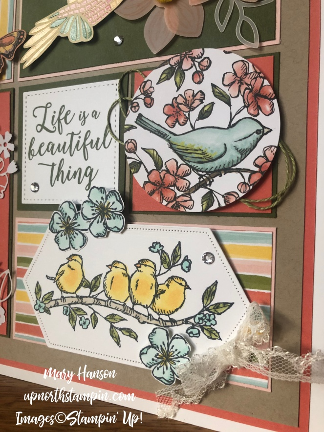 Summer Sampler 2019 #2 - Botanical Butterfly - Mood Mosaic - Bird Ballad - Mary Hanson - Up North Stampin' - Stampin' Up!
