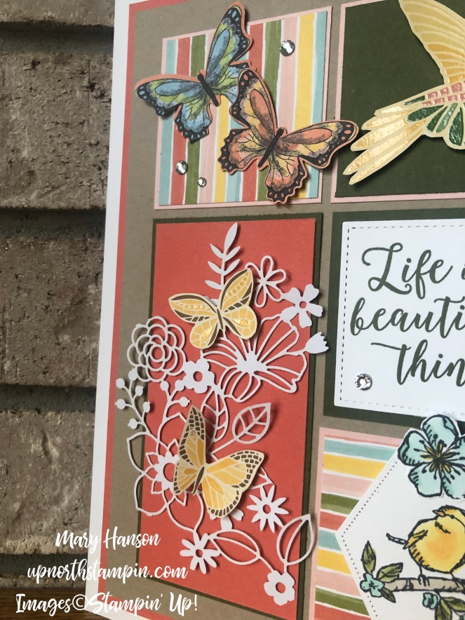 Summer Sampler 2019 #3 - Botanical Butterfly - Mood Mosaic - Bird Ballad - Mary Hanson - Up North Stampin' - Stampin' Up!