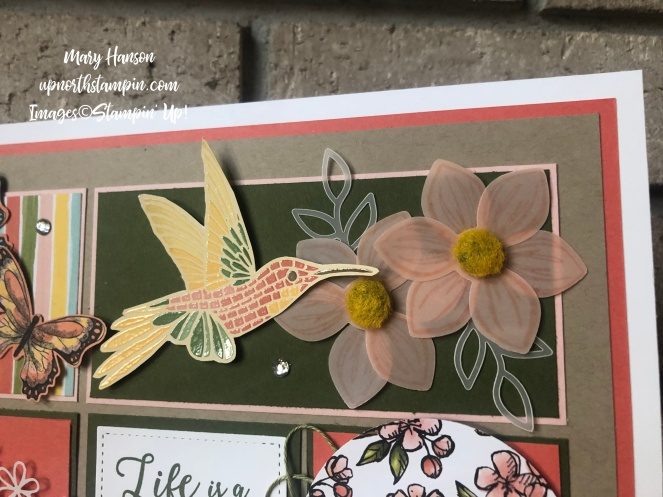 Summer Sampler 2019 #4 - Botanical Butterfly - Mood Mosaic - Bird Ballad - Mary Hanson - Up North Stampin' - Stampin' Up!
