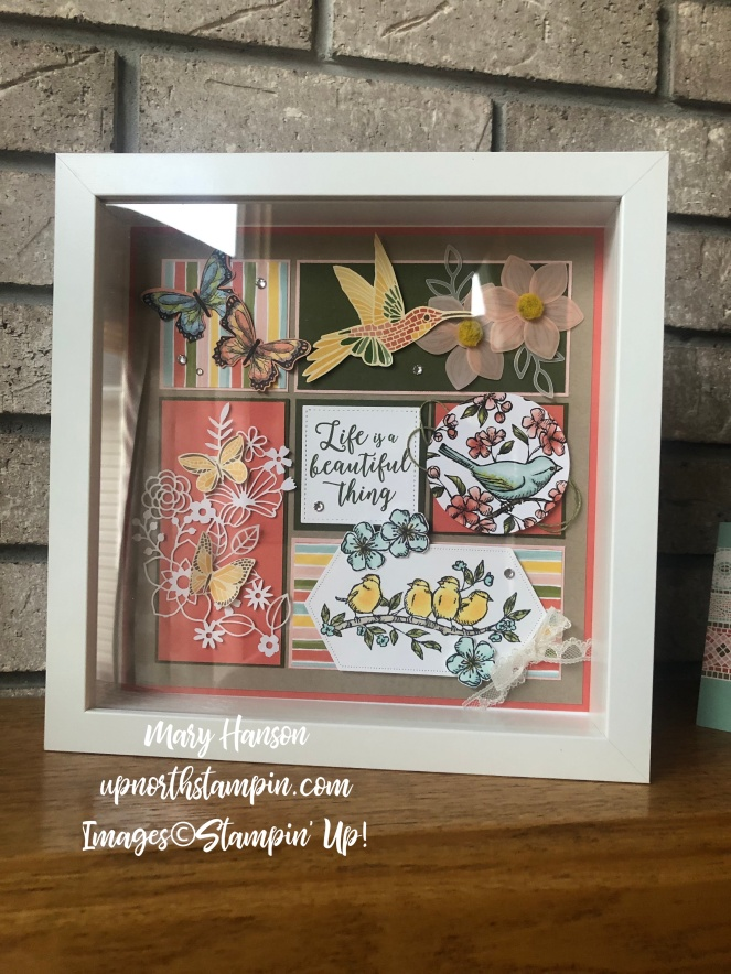 Summer Sampler 2019 - Framed - Botanical Butterfly - Mood Mosaic - Bird Ballad - Mary Hanson - Up North Stampin' - Stampin' Up!