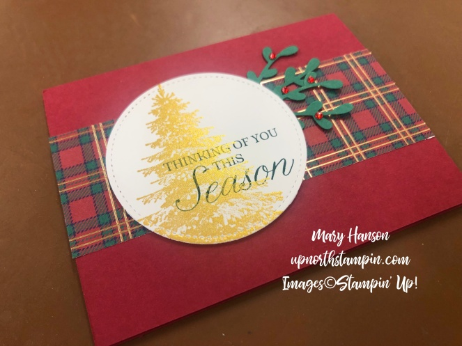 Wrapped in plaid - Sprig Punch - Winter Woods - Mary Hanson - Up North Stampin'